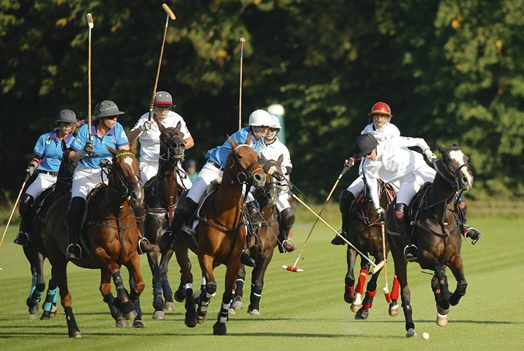 Polo Club Domaine de Chantilly