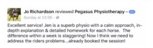 physiotherapist-for-horses