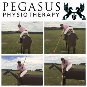 physiotherapy-polo horse