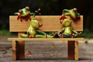 frogs-1644940_1280