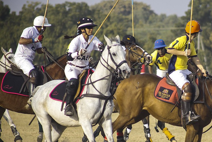 polo-tournament